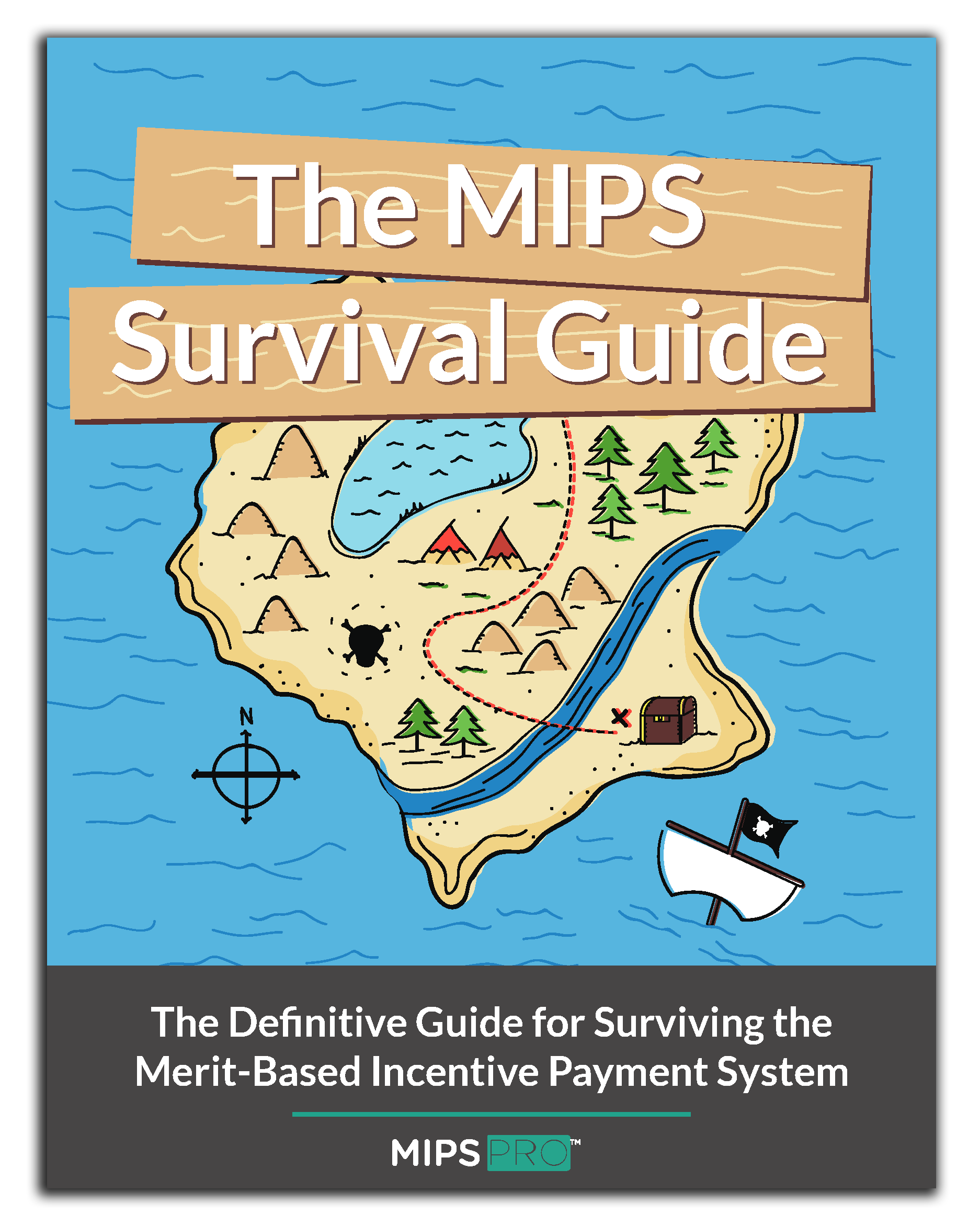 mips_ebook_v6_Page_01.png